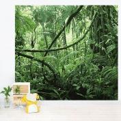 Misterious jungle wallpaper