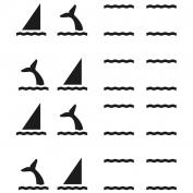 Básico delfines
